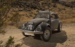 Обои Мексика, Mexico, ралли, Baja 1000, Фольксваген, Desert Race, 2017, Wolkswagen, Beetles, Баха 1000