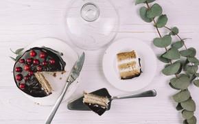 Картинка ягоды, сладость, шоколад, выпечка, Торт, веточки