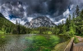 Картинка гора, зелень, природа