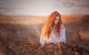 Картинка трава, девушка, цветы, настроение, волосы, блузка, рыжая, рыжеволосая, боке