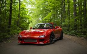Обои спорткар, лес, Mazda RX-7, дорога, красный