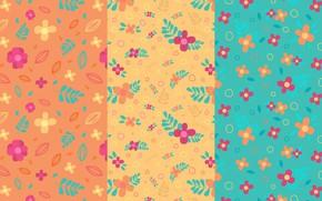 Обои цветы, текстура, листочки, оранжевый фон, голубой фон
