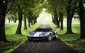 Обои Lane, Silver, Ford, American Muscle