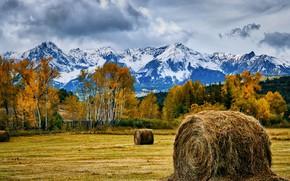 Картинка осень, горы, сено