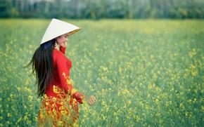 Картинка поле, девушка, восточная