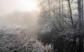 Картинка зима, иней, туман, река