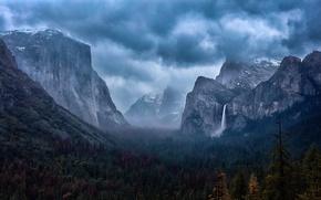 Картинка лес, горы, Yosemite National Park