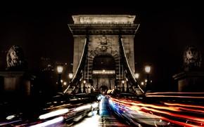 Обои Будапешт, опора, ночь, Венгрия, лев, огни, Цепной мост