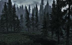 Картинка лес, горы, ели, skyrim