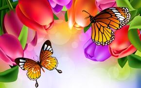 Обои яркость, тюльпаны, бабочки, рисунок, цветы