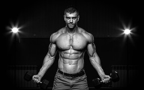 Обои abs, muscles, fitness