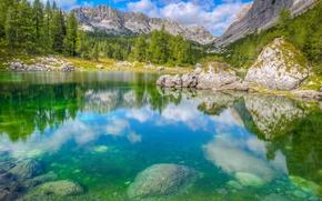Картинка лес, горы, озеро, Словения, Национальный парк Триглав