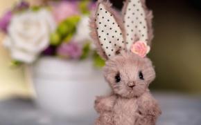 Обои зайка, уши, игрушка, цветок