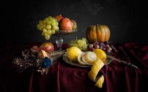 Картинка цветы, ваза, стол, гранат, яблоко, гербарий, нож, натюрморт, сухие, лимоны, тыква, груша, скатерть, виноград