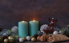 Картинка праздник, новый год, ель, свечи, орешки
