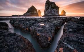 Картинка море, природа, океан, скалы, выдержка, морские звезды