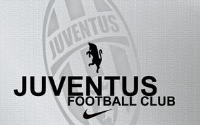 Картинка буквы, зебра, серый фон, juventus_football_club