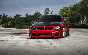 Картинка Sight, BMW, F80, LED, Evel, Carbon, RED