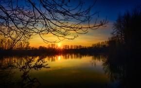 Обои закат, деревья, озеро, Германия