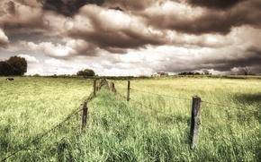 Картинка природа, поле, забор, лето