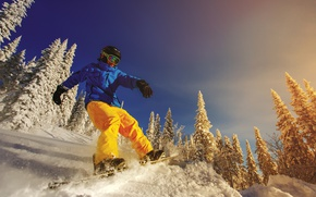 Обои штаны, перчатки, солнце, очки, сноубордист, экстрим, деревья, шлем, сноуборд, зима, куртка, снег, доска