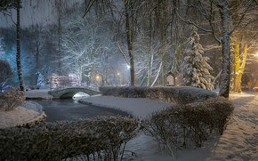 Картинка зима, снег, деревья, мост, пруд, парк, кусты