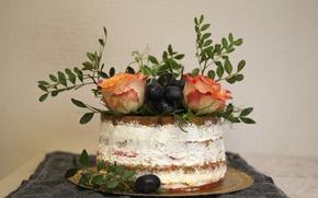 Картинка Розы, Roses, Cake, Тортик
