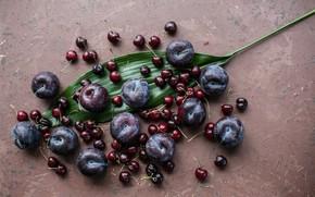 Картинка вишня, лист, фрукты, слива