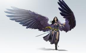 Обои оружие, крылья, арт, воин, todd hebenstreit, LVL, Black Planeswalker, девушка, fantasy