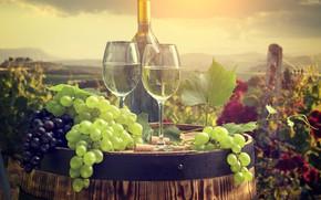 Обои бокалы, бочка, вино, грозди винограда