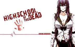 Картинка anime, busujima saeko, hotd