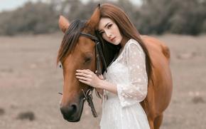 Картинка девушка, конь, азиатка