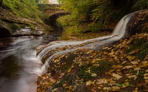 Обои England, осень, река, Река Гелт, Камбрия, River Gelt, Gelt Bridge, листья, Cumbria, Англия, водопад, мост