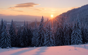 Картинка закат, облака, пейзаж, солнце, лес, ели, рассвет, тени, зима, снег, небо, лучи, сугробы, красота, ёлки