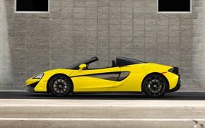 Картинка вид сбоку, 2018, Spider, McLaren 570S
