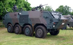 Картинка gun, military, weapon, armored, vegetation, machine gun, armored vehicle