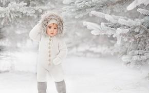 Картинка зима, снег, ветки, мальчик, ели, капюшон, комбинезон, ребёнок