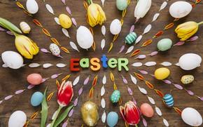 Картинка Весна, Пасха, Яйца, Тюльпан, Лепестки, Буквы, Надпись, Праздник