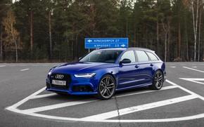 Обои Audi, Blue, Russia, Avant, Forest, RS6, Asphalt