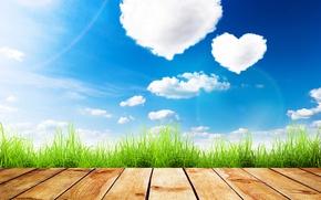 Обои облака, трава, небо, солнце, лето, зелень, доски, День святого Валентина, сердечки