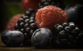 Картинка макро, ягоды, еда