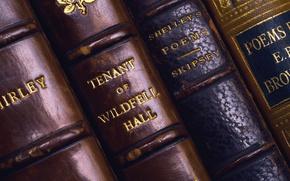 Картинка книги, фолиант, корешки