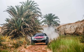 Обои Спорт, Скорость, Гонка, Peugeot, Фары, Red Bull, Rally, Ралли, RedBull, DKR, 3008, Peugeot 3008 DKR