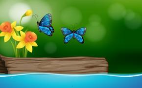 Картинка бабочки, цветы, рендеринг, нарциссы