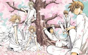 Картинка аниме, арт, персонажи, Tsubasa Reservoir Chronicles