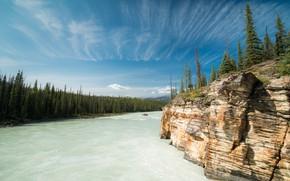 Картинка лес, скала, река, Канада, Альберта, Alberta, Canada, Bow River, Река Боу