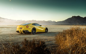 Картинка дизайн, пустыня, кусты, желтая, классная, Ferrari F12