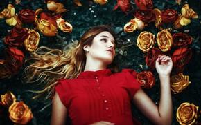 Картинка девушка, цветы, поза, настроение, розы, Fernanda Finsterbush