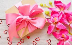Картинка праздник, подарок, сердечки, орхидея, valentine's day, gift