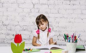 Картинка девочка, школьница, уроки